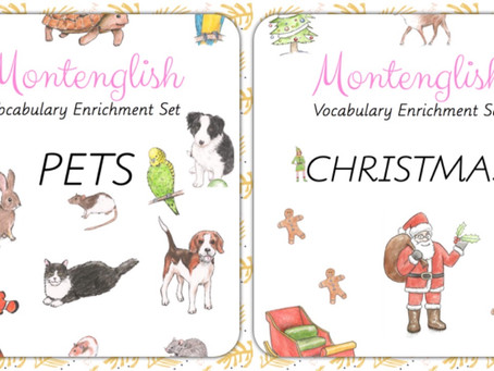 Vocabulary Enrichment Sets and how to work with them. Part one: three part cards