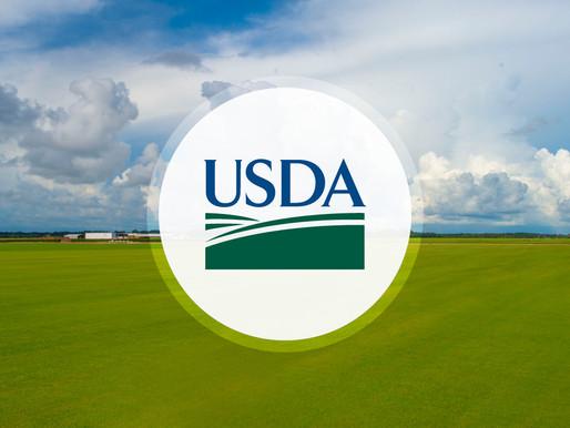 USDA Extends Free Meals for Kids Through December 31, 2020