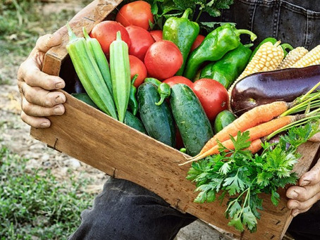 Senator Casey Encourages Participation in USDA 'Farmers to Families Food Box' Initiative