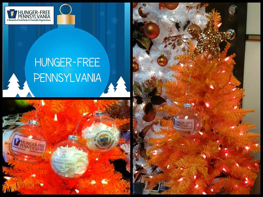HFPA Orange Tree Collage.jpg