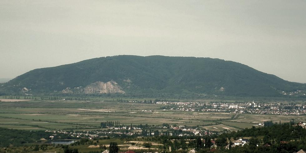 Nagyszőlős és a Fekete-hegy