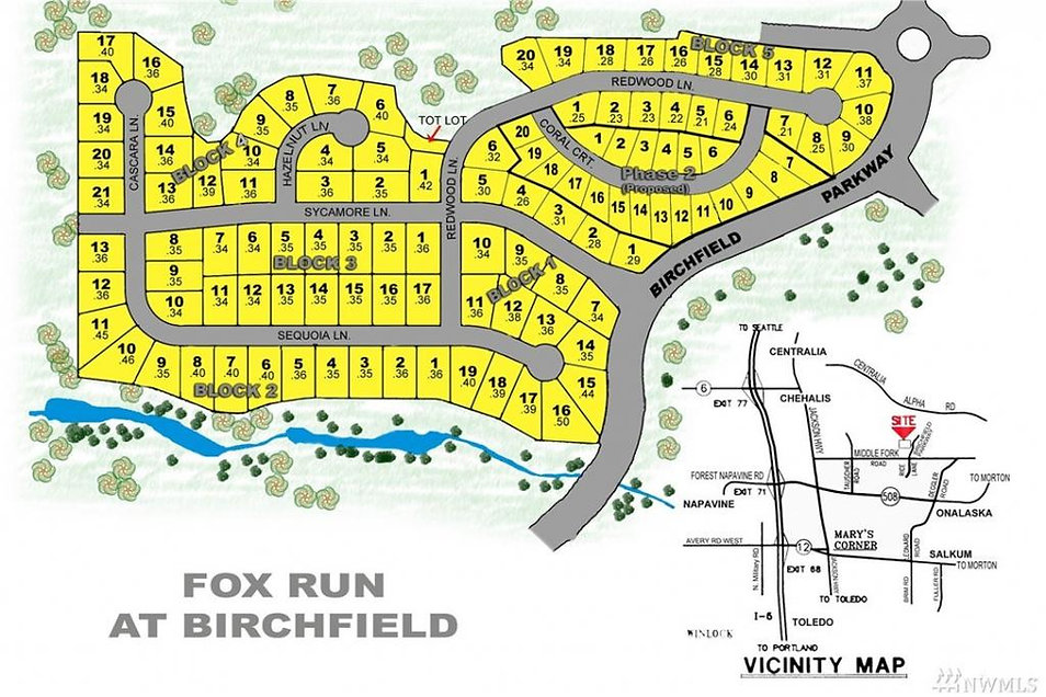 Fox run at Birchfield - plat map.jpg