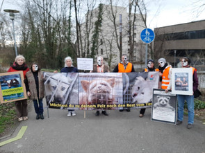 Ampelaktion Anti Pelz im Februar 2020 in Offenburg