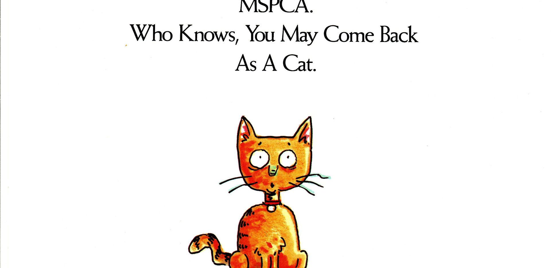 Ad campaign for the MSPCA in Boston