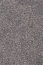 Haymes_Surface_6859_Shale.jpg