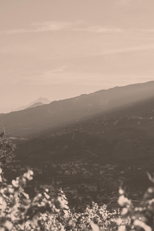 Sonnenuntergang im Rebberg im Wallis