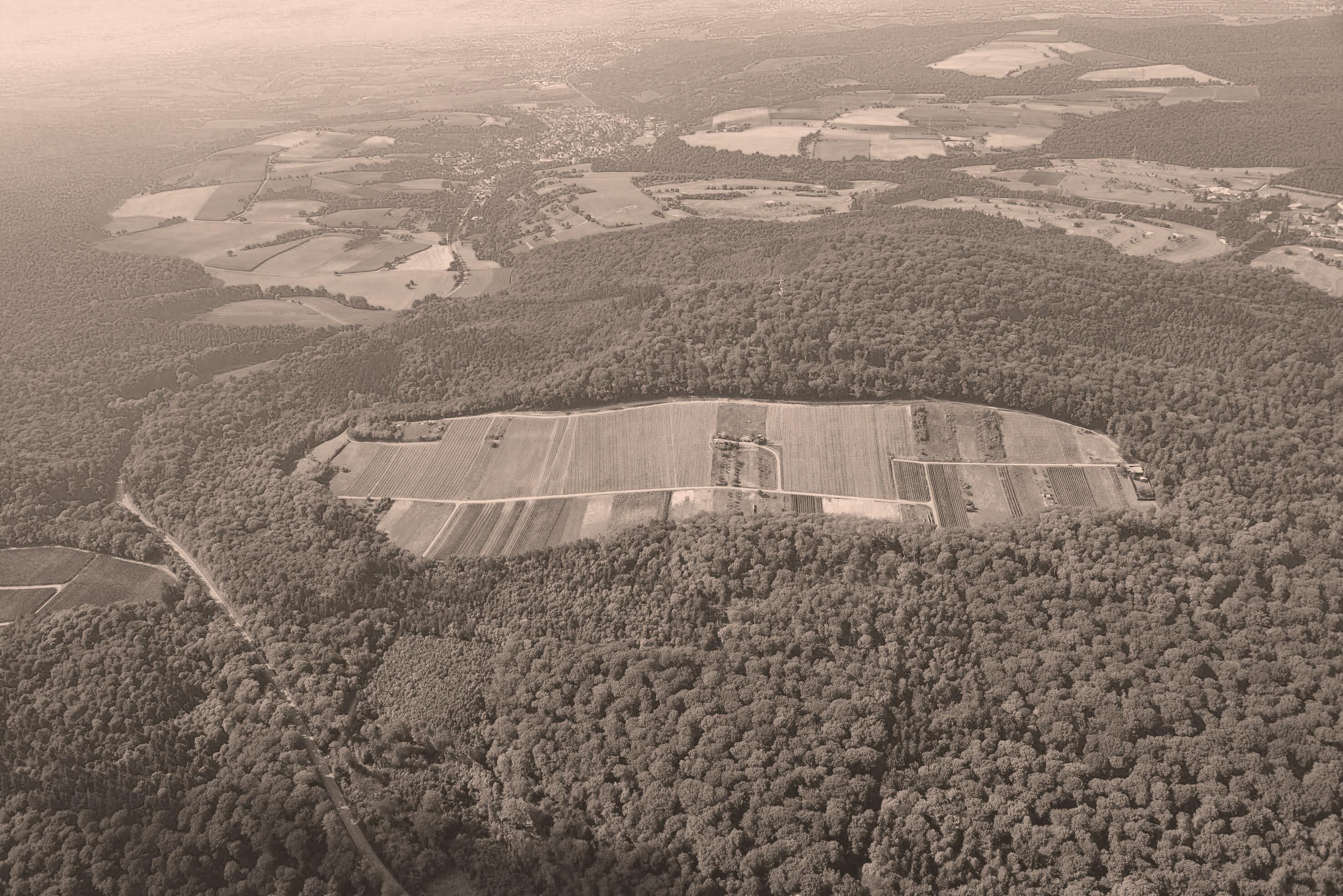 Luftaufnahme vom Weingut Heitlinger