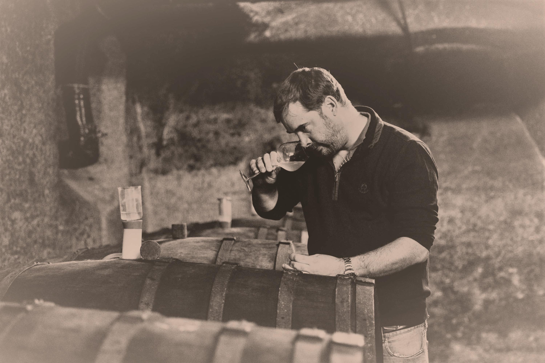 Maximilian von Kunow im Weinkeller