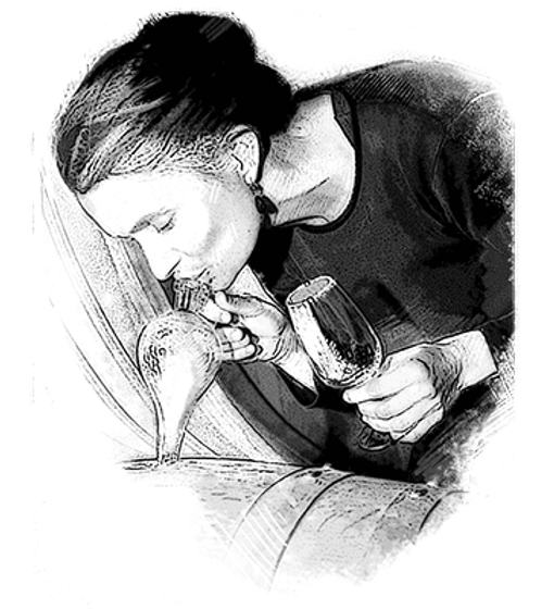 Vinothek Hauser Illustration Ursula Irio