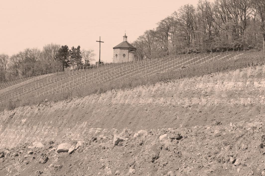 Rebberge vom Weingut Heitlinger