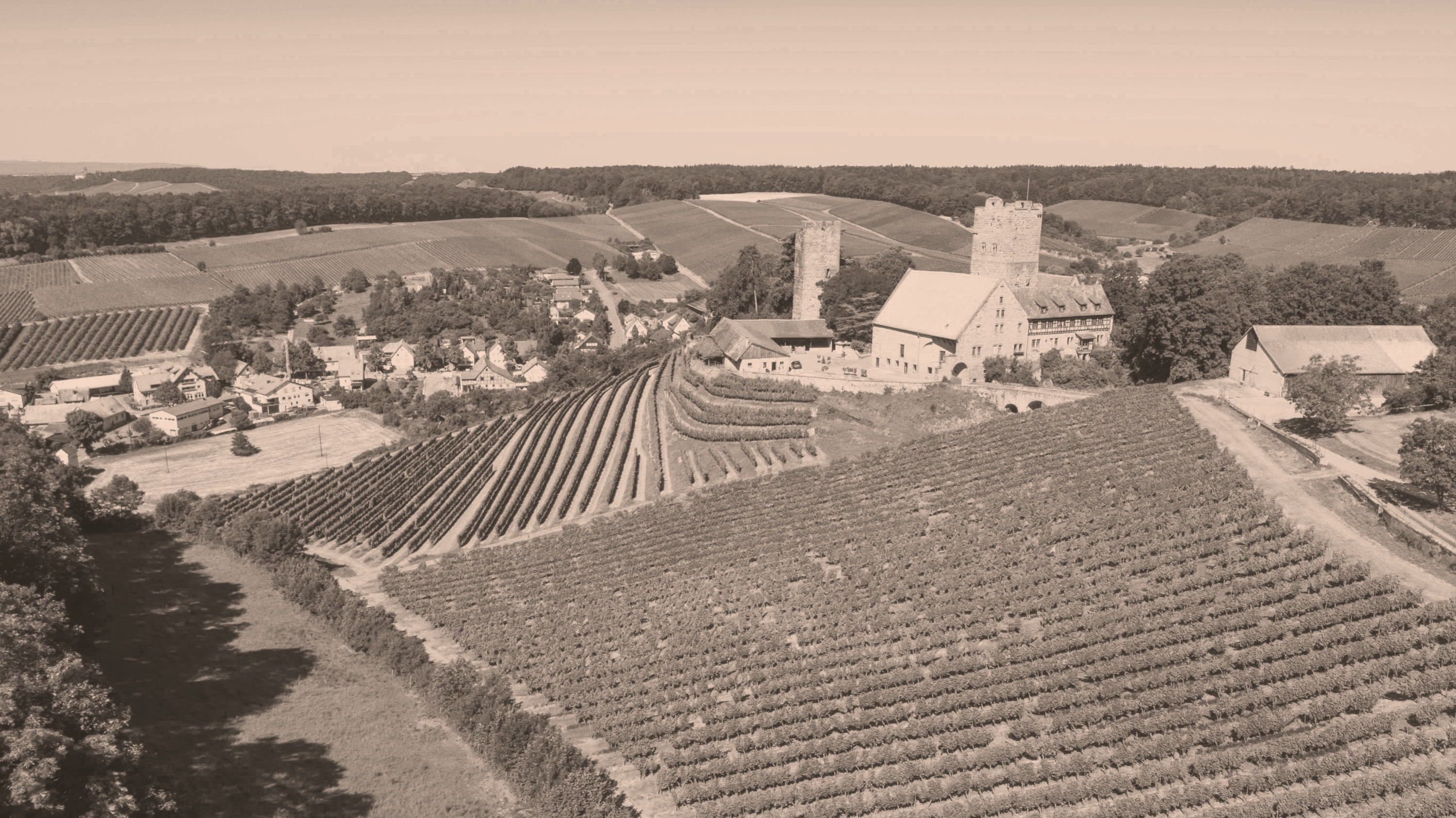 Weinberge in Neipperg
