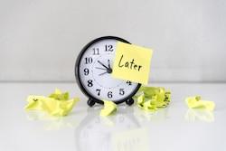 Procrastination in the Brain