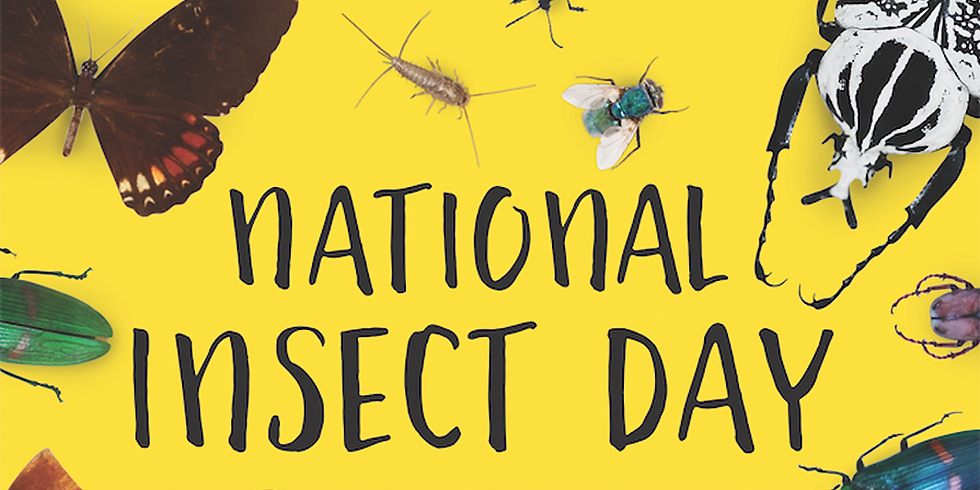 Truly Nolan Insect Day