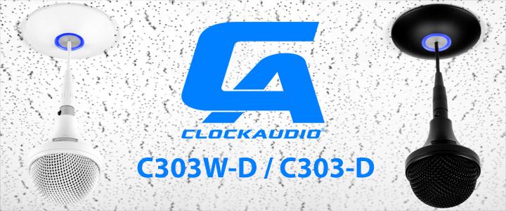 C303-D_002b