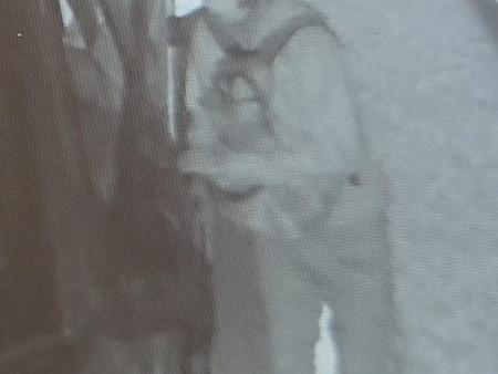 Person of Interest: Burglary of Vehicle