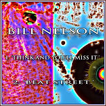 Bill Nelson - Think And You'll Miss It