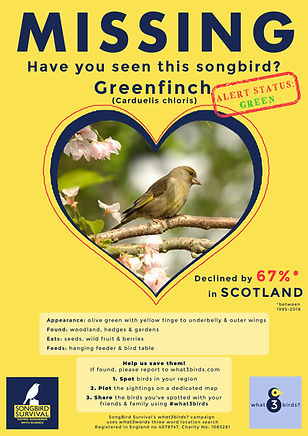 SCOTLAND, Greenfinch, Missing Poster, So