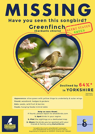 YORKSHIRE, Greenfinch, Missing Poster, S