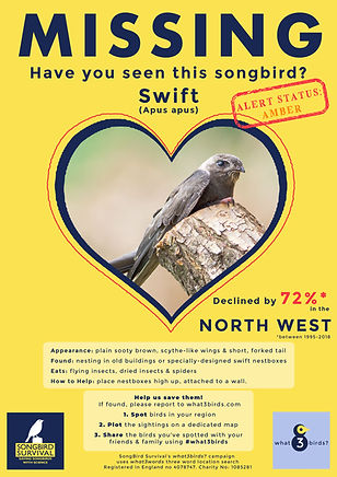 NORTH WEST, Swift, Missing Poster, SongB