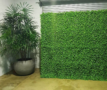 Green Wall Hire
