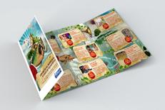 Brochure Klingenthal