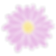 BFC purple flower.png