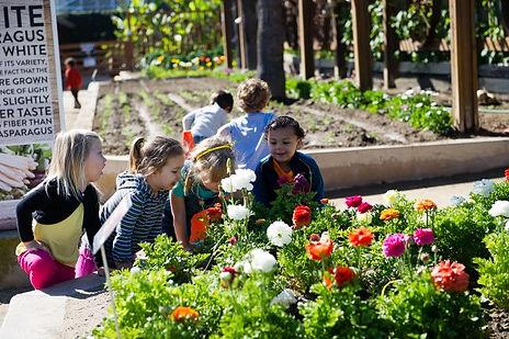 Children exploring local garden