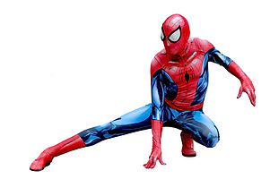 spiderman-3309033_1920.jpg