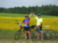 Cycling Sunflowers Picture.jpg