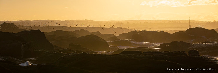 Les rochers de Gatteville