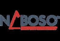 naboso-technology.png