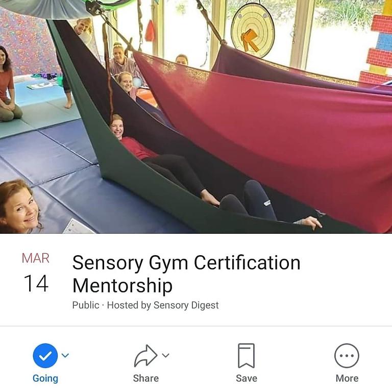 Sensory Gym Certification in Washington State