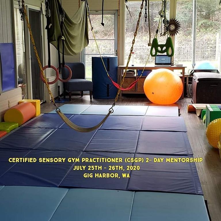 Certified Sensory Gym Practitioner 2-day Mentorship