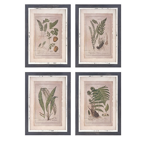 Clen Studio Botanicals, set of 4