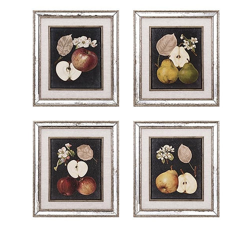 Clen Studio Apples and Pears