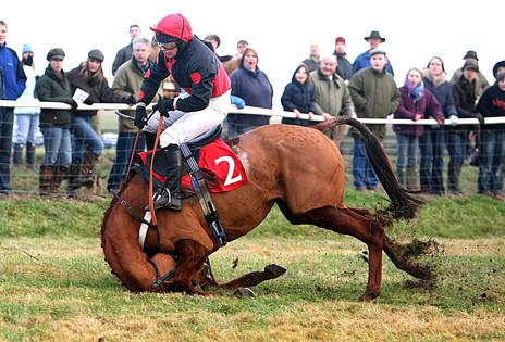 Wiltshire Sports Photographer
