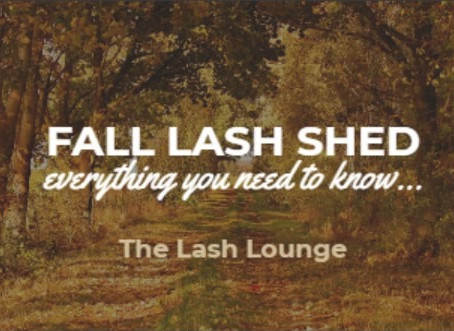 Fall Lash Shedding