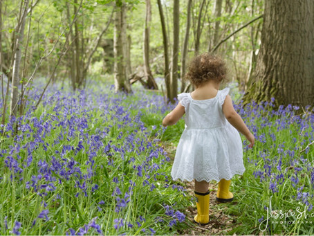 Oh how blue-tiful – Bluebell minis that you don't want to miss.