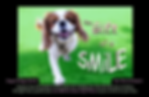 gift of a smile facebook cover.png