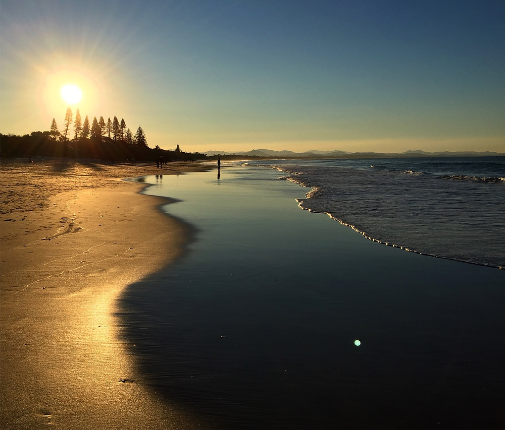 Photo of sunset at the beach. With golden sand and reflective water on sand and gentle waves lapping the shore. Sun setting behind pine trees in the background.
