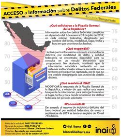 Infografía :: BLIC-INAI