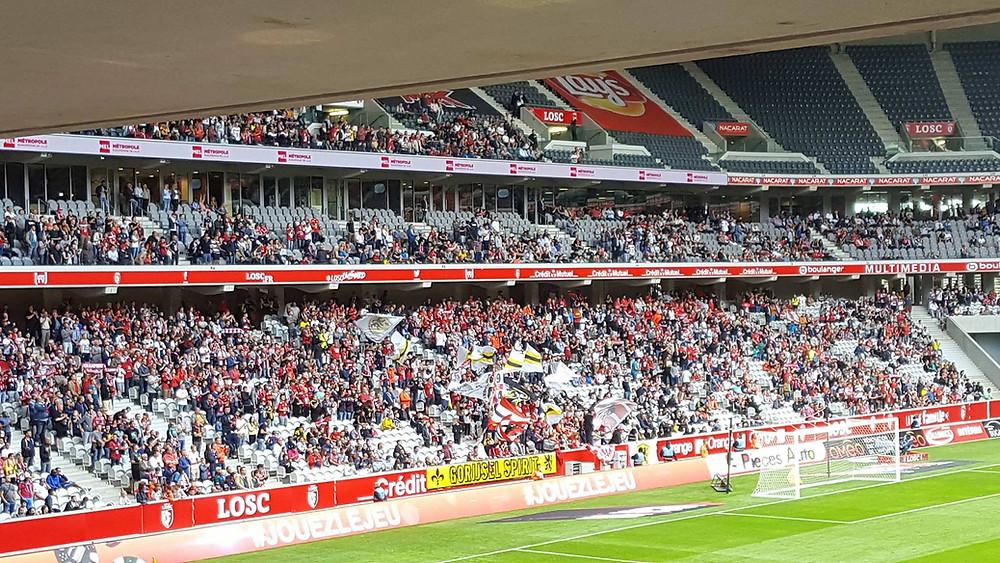 Photo de la tribune lors de Lille - Caen
