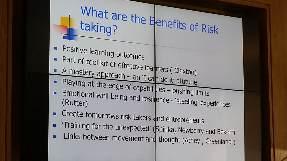 benefits of risk