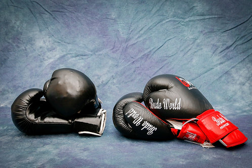 Boxing Gloves (Two pair)