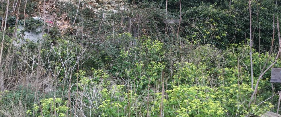progetto giardino ritrovato cammarata (5
