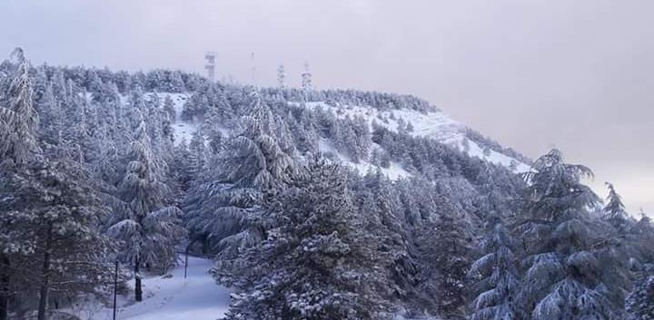 neve monte cammarata (1).jpg