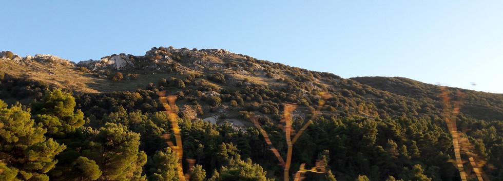 riserva naturale monte cammarata