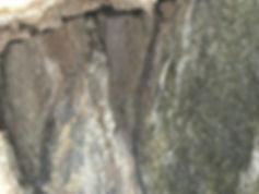 grotte acquafitusa cammarata  (6).jpg