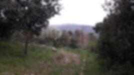 monte cammarata nel parco regionale dei