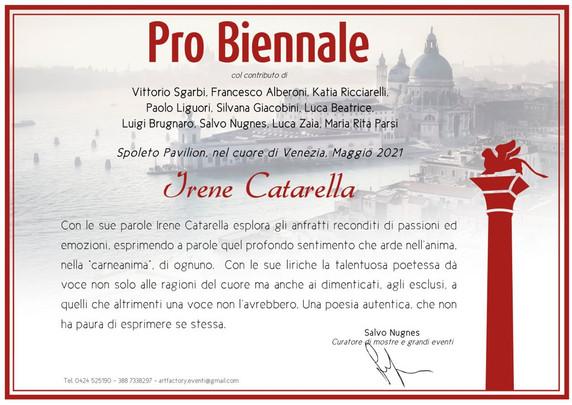 irene catarella pro biennale di venezia